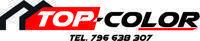 Logo firmy top-color
