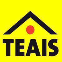 Logo firmy TEAIS Polonia