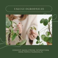 Logo firmy Ogrody Olsztyn - Projektowanie i Budowa Perfect Gardens