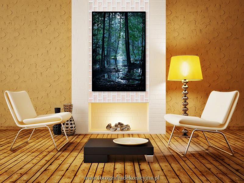 Fotografia dekoracyjna w Twoim domu