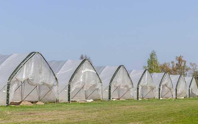 Czy namiot halowy może posłużyć jako hala produkcyjna?