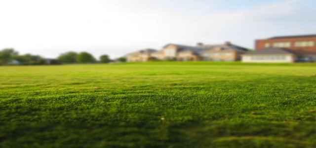 Idealny trawnik przed domem, jak o niego dbać?