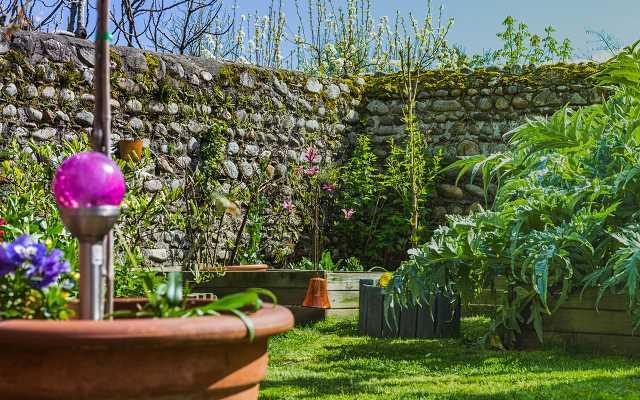 Wypożyczalnia sprzętu ogrodniczego – lepiej wypożyczyć czy kupić?