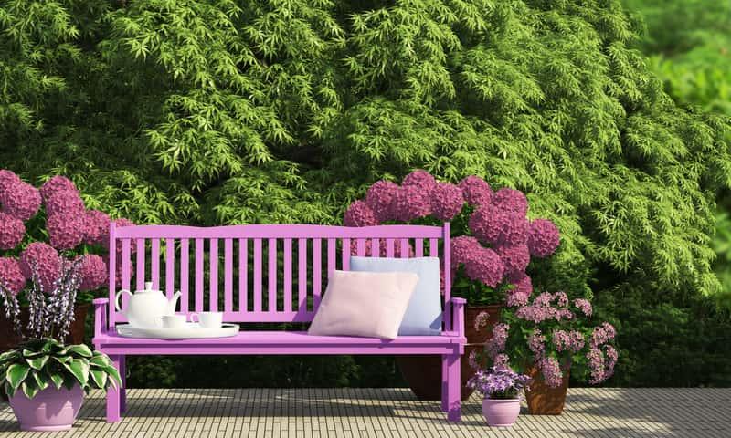 Drewniana ławka ogrodowa w kolorze intensywnego różu jako inspiracja na ławki ogrodowe do zakupu