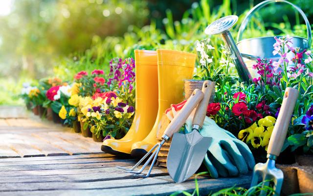 Nadeszło lato – czas zaopiekować się ogrodem!