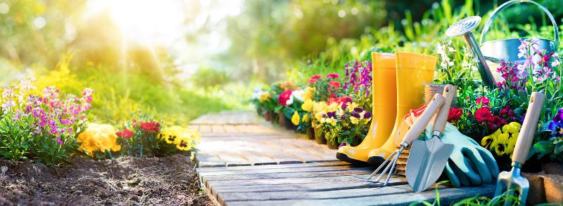 Zaopiekuj się ogrodem