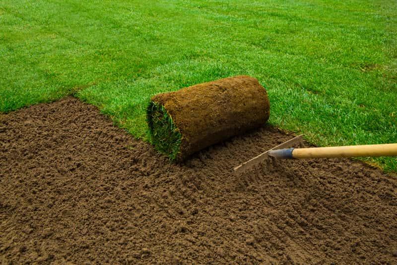 Sadzenie trawnika z rolki, czyli najłatwiejszy i najszybszy sposób na to, jak założyć trawnik krok po kroku