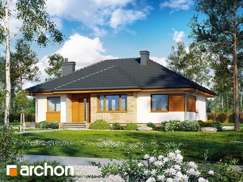 Projekt domu w akebiach