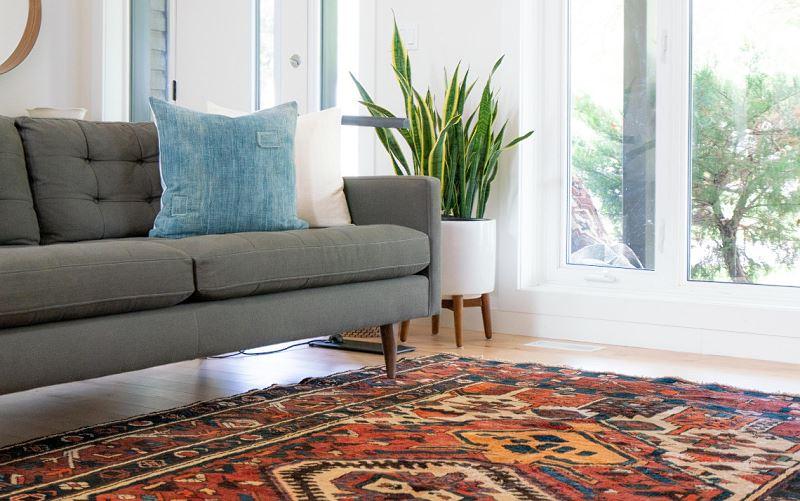 Wyczyszczony dywan w domu
