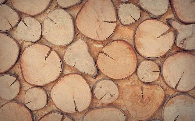 Wyroby z drewna – zrób to sam!