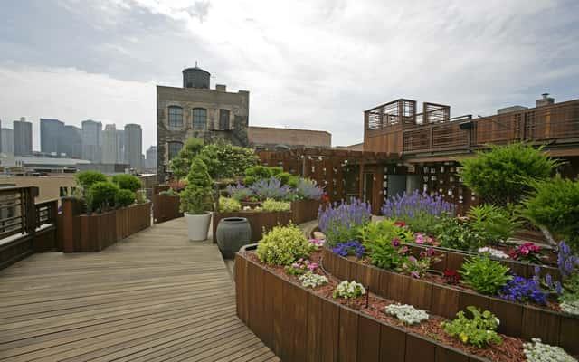 Zielone dachy krok po kroku – konstrukcja, warstwy, wymagania, opinie