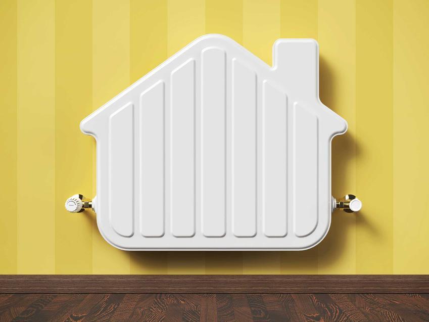 Grzejniki dekoracyjne w domu teraz pełnią rolę nie tylko użytkową. Mogą być elementem aranżacji pomieszczenia, są zabawne i dobrze się komponują.