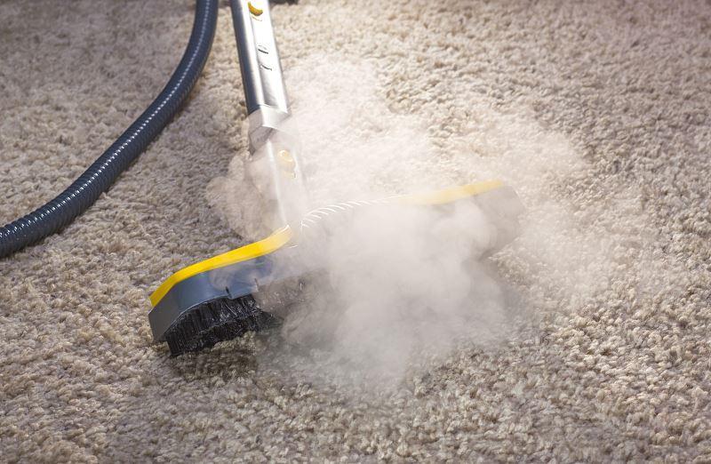 Odkurzacz wodny to świetne rozwiązanie. Łączy w sobie zalety odkurzacza i mopa parowego, który usuwa zabrudzenia pod wpływem temperatury i wilgoci.