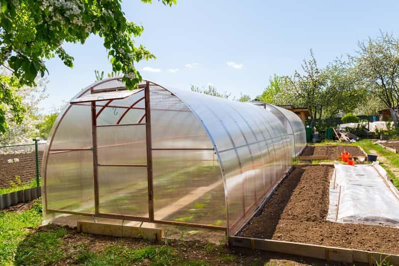 Szklarnie z poliwęglanu to lekkie, wysokiej jakości instalcje, które dobrze sprawdzają się w ogrodzie. Szklarnie z poliwęglanu dobrze się sprawdzają.
