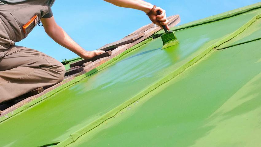 Malowanie dachu przez specjalistę farbą w zielonym kolorze za pomocą dużego pędzla stojącego na drabinie przymocowanej do dachu ze starej blachy