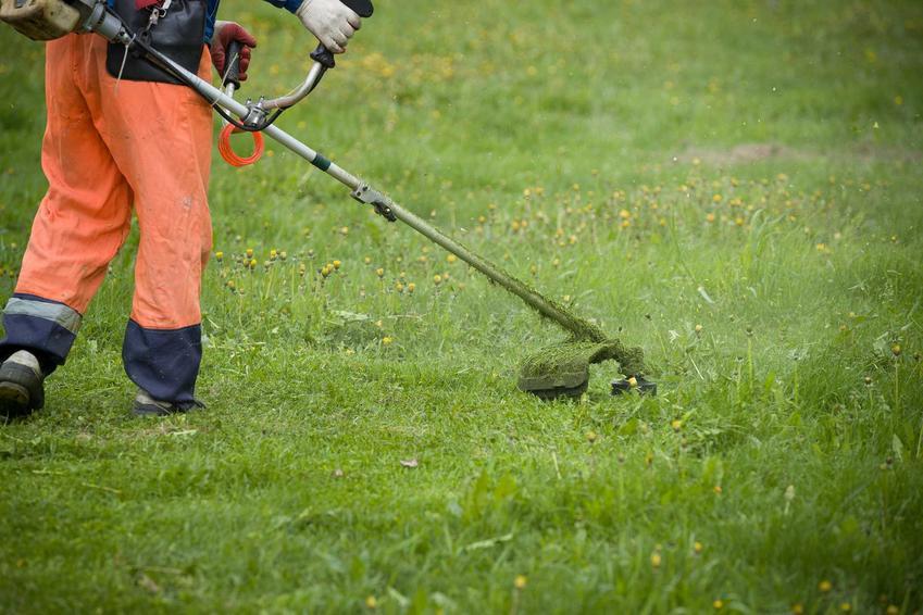 Cennik koszenia trawy 2021 w różnych regionach Polski