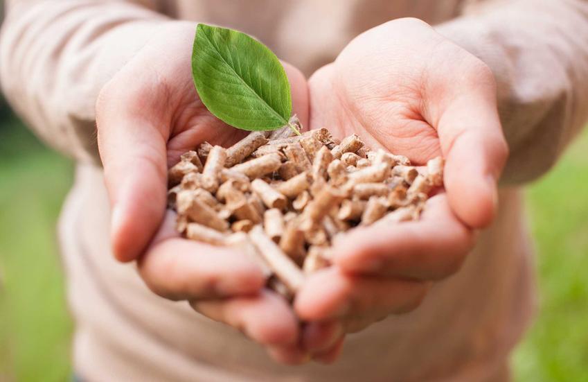 Kotły ogrzewane biomasą to świetne rozwiazanie. Są bardziej ekologiczne i dobrze się sprawdzają, a pellet nie jest szczególnie drogi.