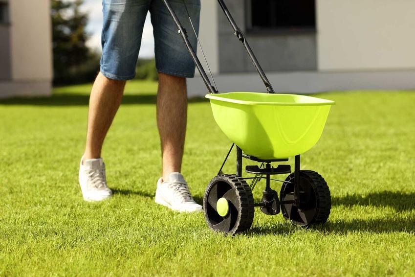 Zakładanie trawnika może wykonywane przez specjalistów. Jest kilka sposobów na założenie trawnika, ostatnio dużą popularnością cieszy się trawnik z rolki, chociaż może to być droższe rozwiązanie