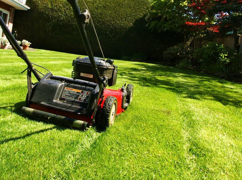 Pielęgnacja trawnika przez specjalistów nie musi być kosztowna. Zakres prac może być różny, ale najczęsciej w jego skład wchodzi koszenie i zabiegi pobudzające do wzrostu