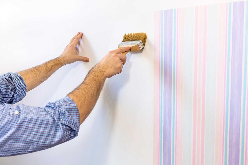 Czy Można Pomalować Tapetę Jakie Farby Do Tapet Sprawdzą Się Najlepiej