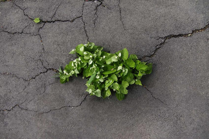 Naprawianie ubytku w betonach można wykonać za pomocną specjalnych akryli czy różnego rodzaju uszczelniaczy. Ubytki w betonie mogą być bardzo widoczne.