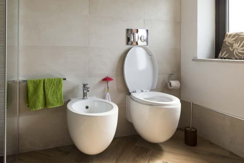 Bidet w nowoczesnej łazience, a także rodzaje bidetu, popularni producenci oraz cena najlepszych bidetów i opinie o nich