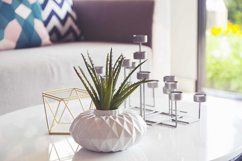 Dekoracje do domu można wybrać różnego rodzaju. Najlepsze ozdoby to te, które mają duszę i poprawiają charakter mieszkania.