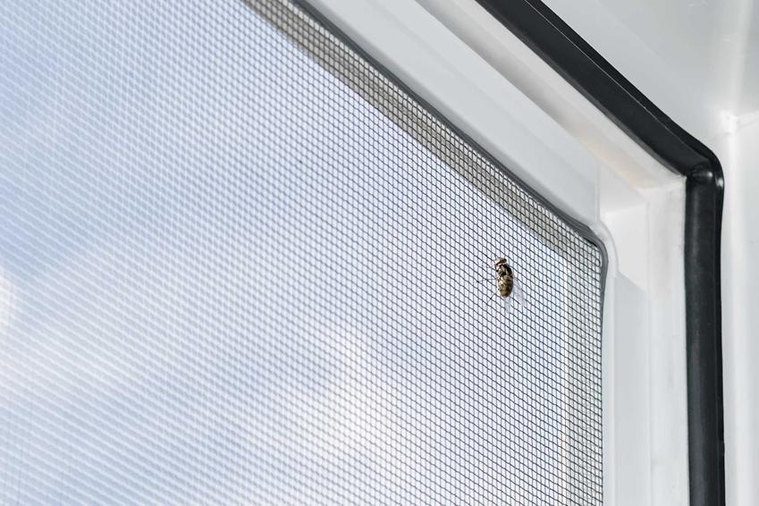 Warto założyć moskitiery na okna dachowe, żeby lepiej chroniły przed wpadaniem owadów. Moskitiera na okna dachowe łatwo się montuje