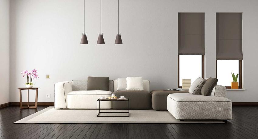 Eleganckie meble do salonu są najbardziej popularne. Nowoczesny, minimalistyczny styl jest idealny do salonów w dużych i małych mieszkaniach.