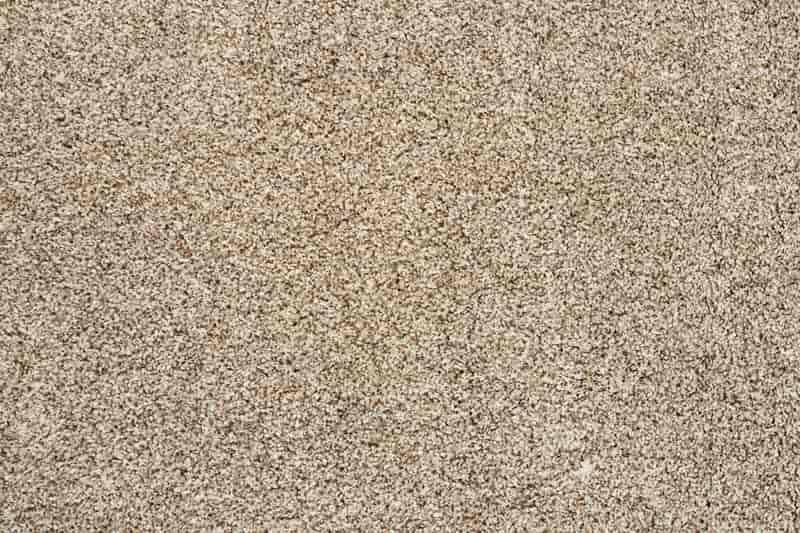 Beżowy dywan ze sklepu Komfort, a także dywany Komfort krok po kroku, przegląd, oferta, ceny oraz opinie o produktach