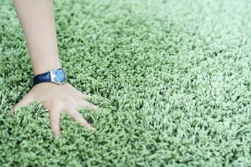 Gęsty miętowy dywan w stylu shaggy, a także opinie o dywanach, rodzaje, grubości oraz najciekawesze wzory dywanów