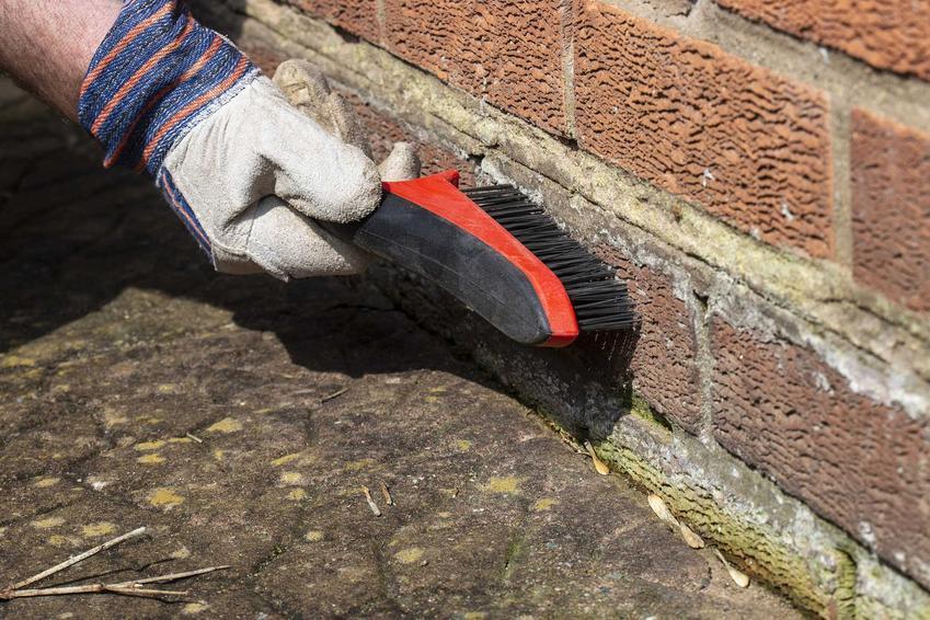 Impregnat do cegły zadziała, jeśli dobrze wyczyścisz cegły. Impregnacja jest konieczna, jeśli chcesz, by ściana była ładna i w dobrym stanie przez długi czas.