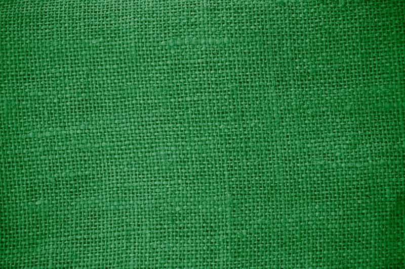 Zielony dywan do pokoju dziennego, a także najpiękniejsze wzory, opinie o producentach oraz ceny i przegląd zielonych dywanów
