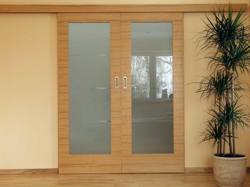 Drzwi przesuwne naścienne w salonie oraz polecany system drzwi przesuwnych do domu, producenci, ceny i zastosowanie