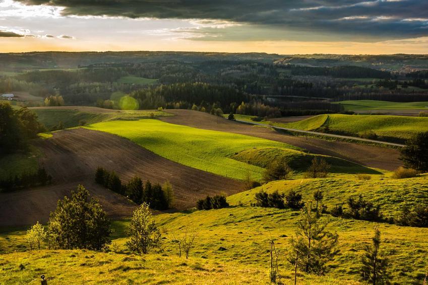 Malowniczy krajobraz polskich pól, czyli najlepsze miejsca do zamieszkania w Polsce z najlepszą pogodą i klimatem