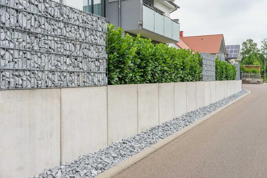 Płot betonowy wylewany przy nowoczesnym bloku z elementami dekoaracyjnymi z siatki i kamienia i dekoracyjnymi krzewami liściastymi wzdłuż drogi wewnętrznej na osiedlu Obsługa czytników ekranu włączona.