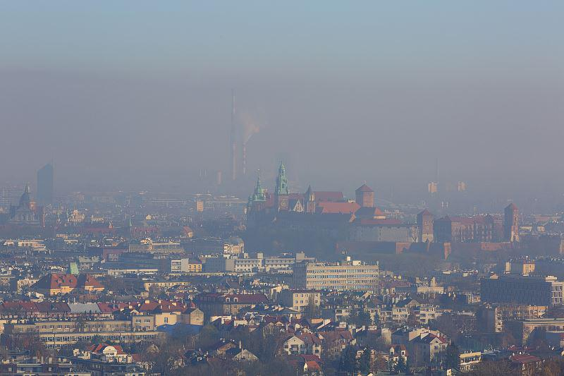 Czy nowe przepisy o ograniczeniu ogrzewania domów węglem i drewnem ograniczą smog w Krakowie? Przepisy ograniczają ilość smogu.