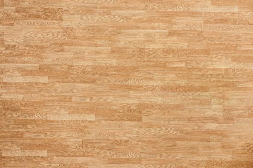 Parkiet bukowy oraz deska podłogowa bukowa i szacowane ceny zakupu podłogi bukowej lub podłóg z naturalnego drewna
