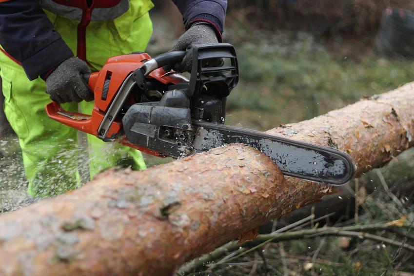 Piła spalinowa podczas cięcia drewna, czyli pilarki spalinowe czy tez popularne piły spalinowe i ich zastosowanie oraz rodzaje i ceny