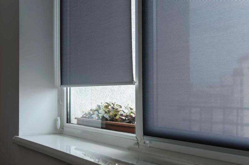 Rolety Jysk w oknie, na przykład rolety dzień noc, a także ceny i opinie o sklepie jysk.pl, przegląd najlepszych modeli rolet
