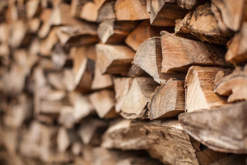 Poukładane równo drewno opałowe oraz jego rodzaje oraz cena drewna na opał