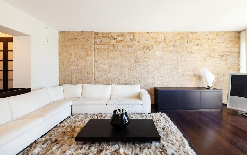 Kamień dekoracyjny na ścianę w dużym salonie, a także cena za kamień dekoracyjny