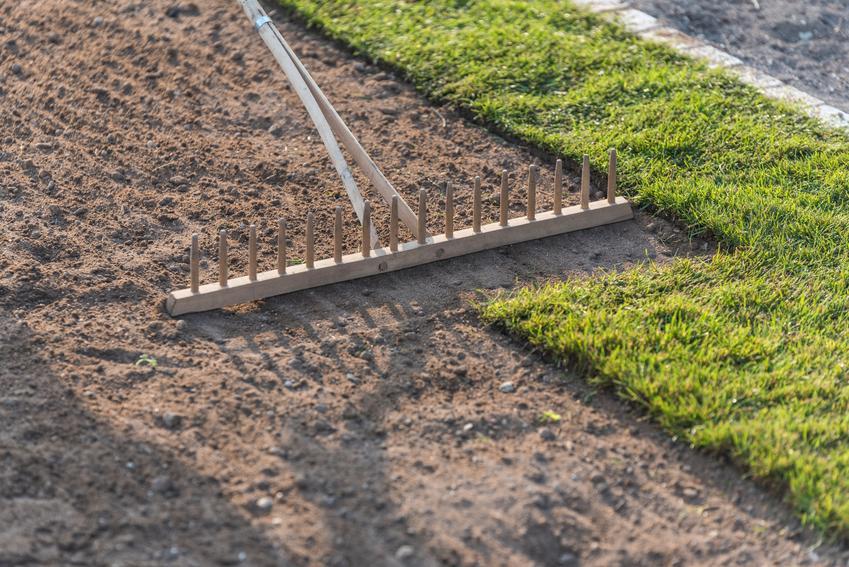 Trawa z rolki podczas układania na glebie, a także najlepsza gleba pod trawnik