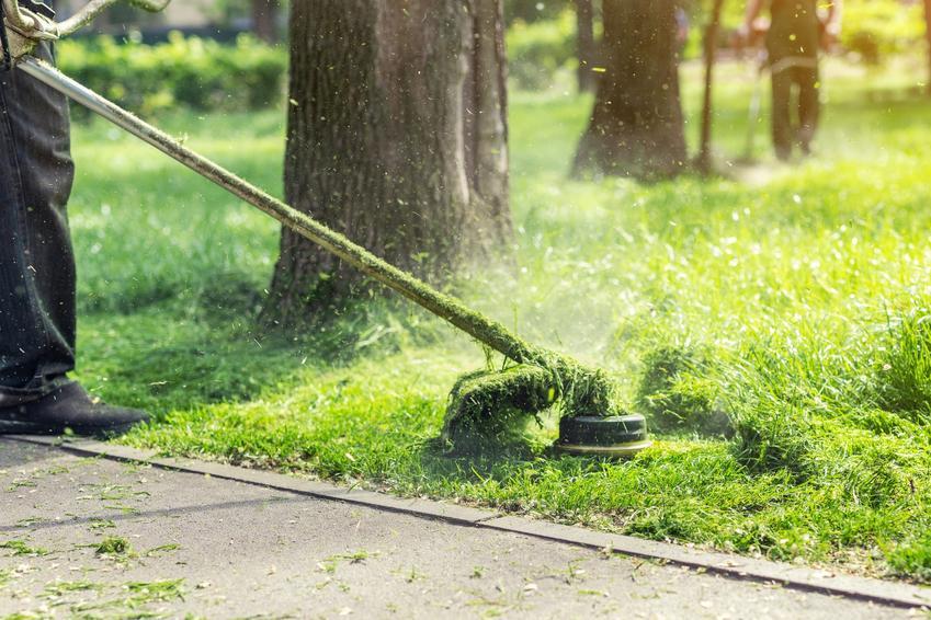 Kosa do trawy podczas pracy w ogrodzie, a także polecane kosiarki do trawy