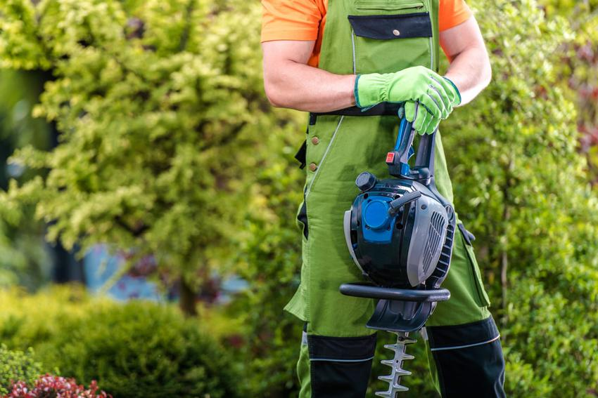 Mężczyzna w ogrodzie trzymający akumulatorowe nożyce do żywopłotu, czyli polecana piła do żywopłotu