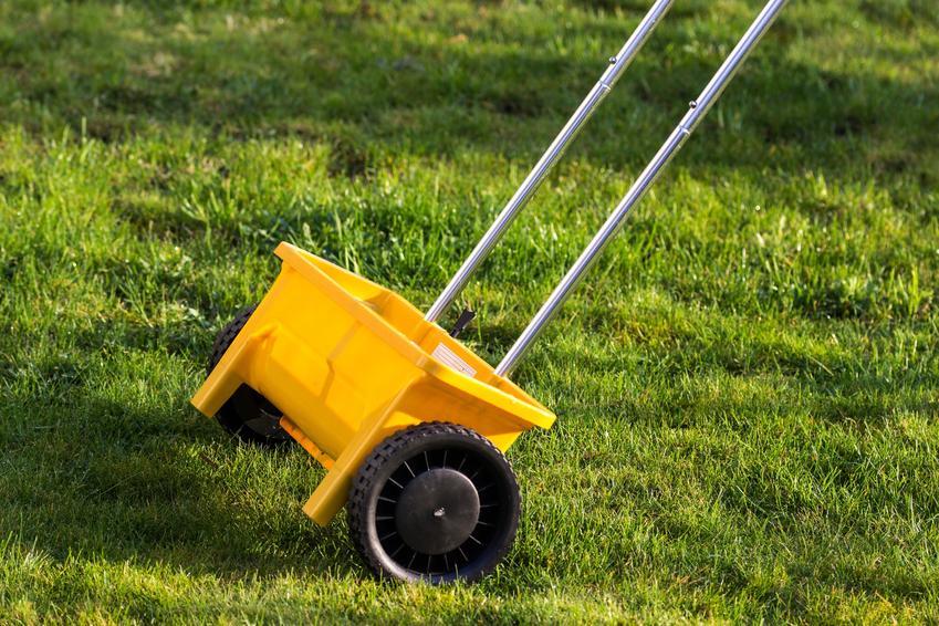 Urządzenie do rozsiewania nawozu na trawie, a także wapnowanie trawnika i odkwaszanie trawnika