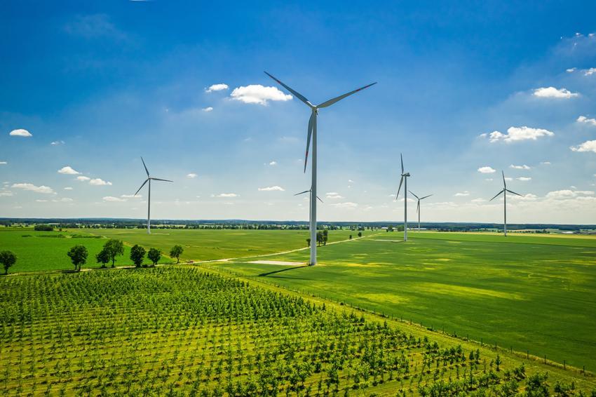 Farma wiatraków na tle traw oraz największa farma wiatrowa w Polsce