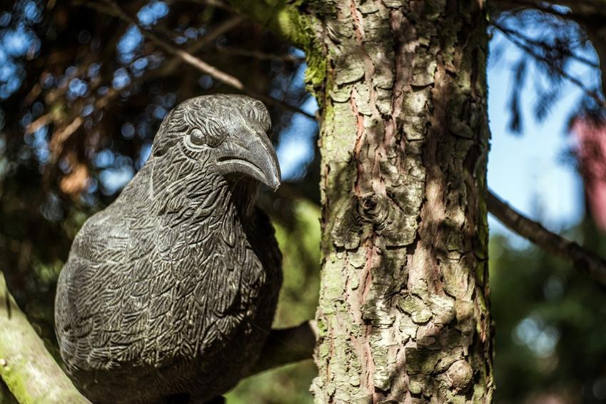 Sztuczny ptak w ogrodzie na drzewie, a także skuteczne odstraszanie ptaków
