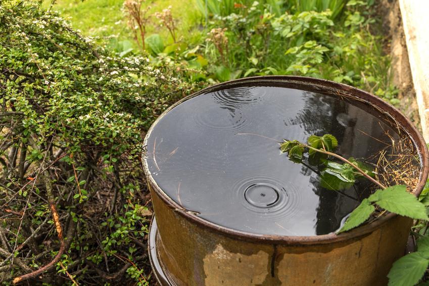 Korzyści płynące z posiadania zbiornika na deszczówkę