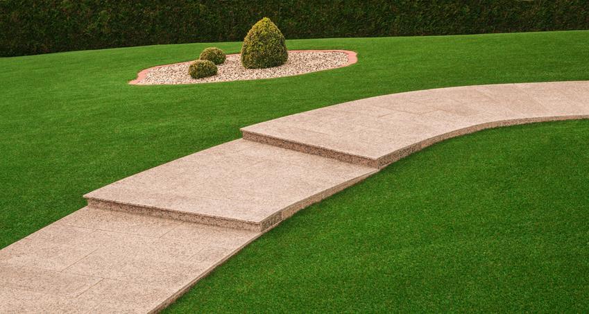 Piękny trawnikw ogrodzie, a także kiedy siać trawę, kiedy sadzić trawę, zakładanie trawnika